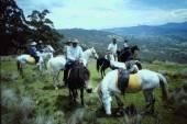 Trail Riding, Barringon Tops,NSW