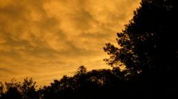 Tamborine Mt Sunset 7 Jan 2014