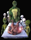 Greys and Reptilians
