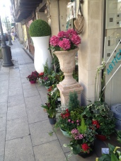 St Foy La Grand florist shop