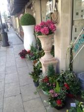 St Foy La Grand florist shop